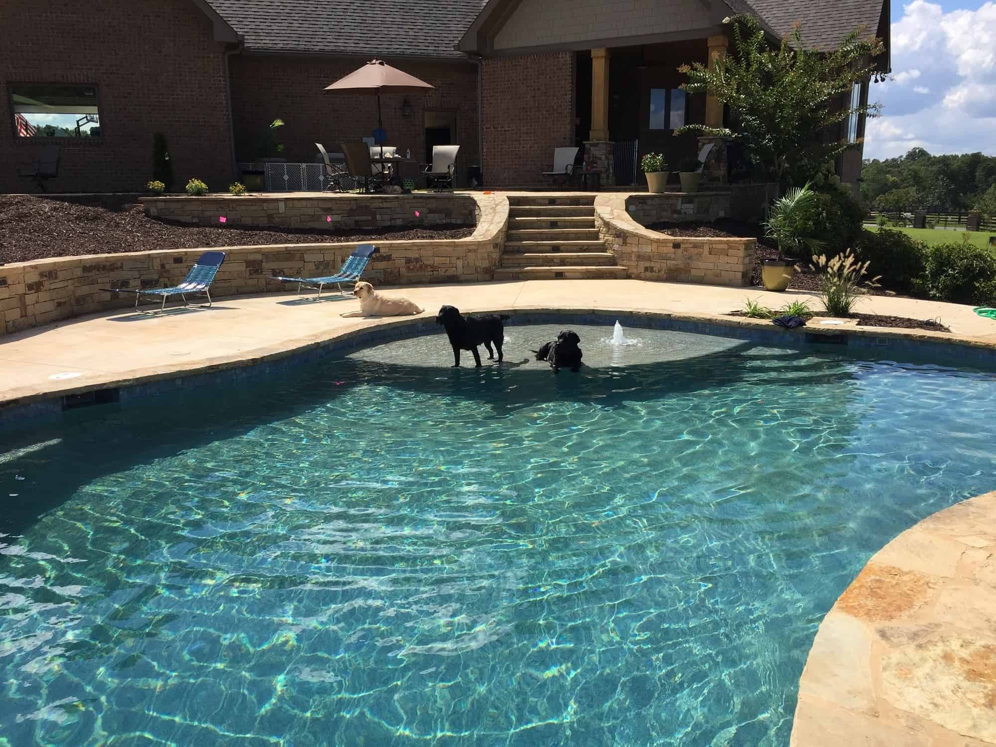 Sandal Luxury Designing Pools